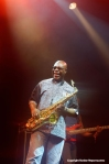 Manu Dibango at WOMAD 2014 by Ronise Nepomuceno