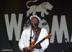 Clinton Fearon at WOMAD 2014 by Dylan Garcia