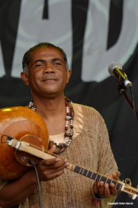 Justin Vali & Ny Malagasy at WOMAD 2014 by Dylan Garcia