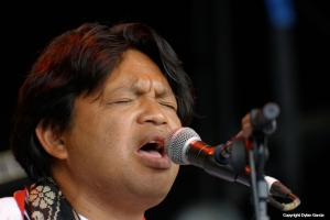 Justin Vali and Ny Malagasy at WOMAD 2014 by Dylan Garcia