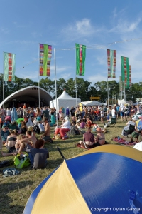 Revellers at WOMAD 2014 by Dylan Garcia