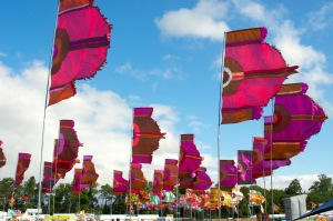 Flag display at WOMAD UK 2015