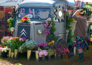 Trader's display at WOMAD UK 2015